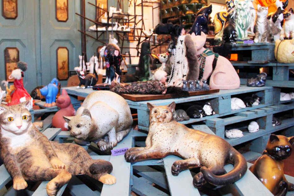 Katzenfiguren stehen in der Katzenkunst-Sammlung im Rittergut Bösenbrunn.