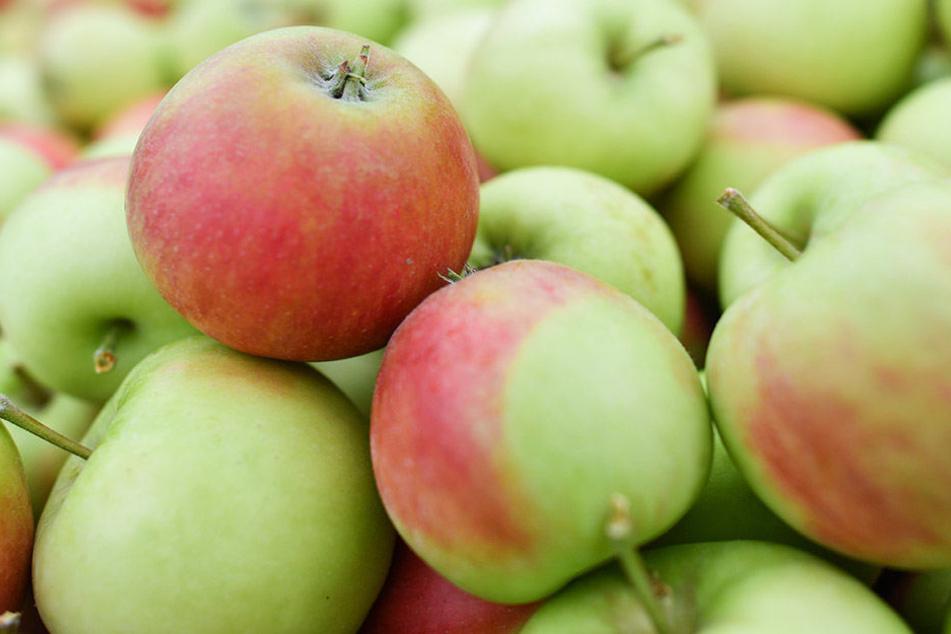 Frisches Obst dient als perfekter Snack für zwischendurch.