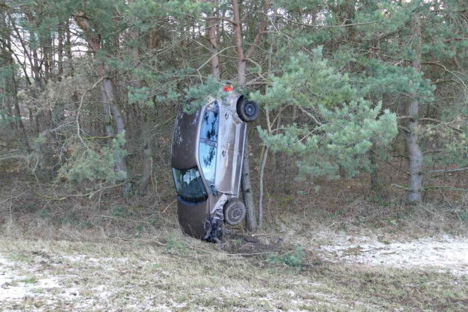 Das Auto stellte sich senkrecht an dem Baum auf.