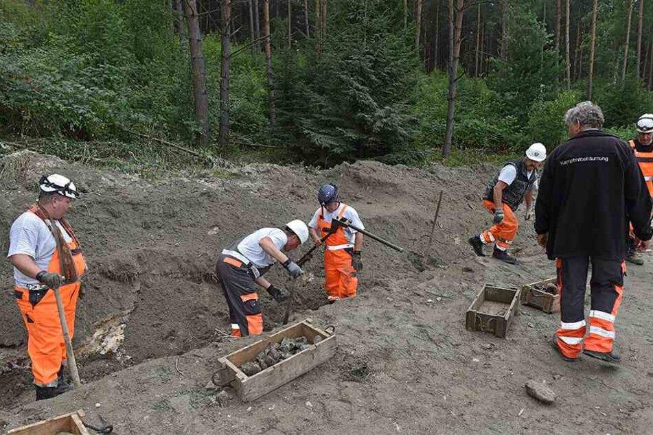 Experten bei der Granatensprengung in der Dippoldiswalder Heide.