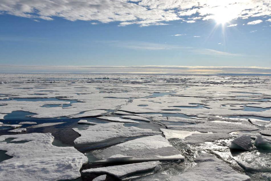 Der Meeresspiegel steigt in der Arktis jährlich an.