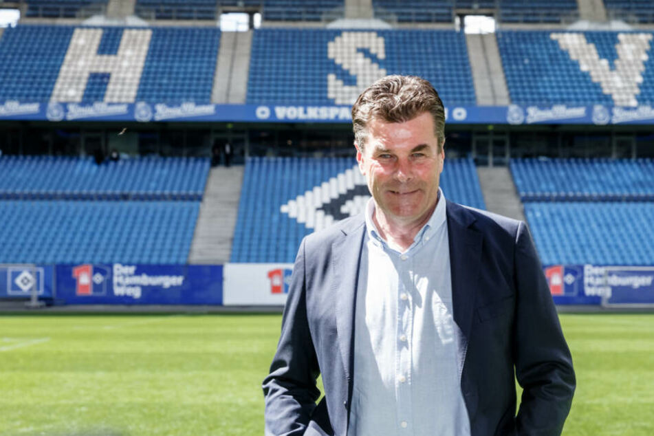 Dieter Hecking führt den Hamburger SV als Trainer in die neue Saison.