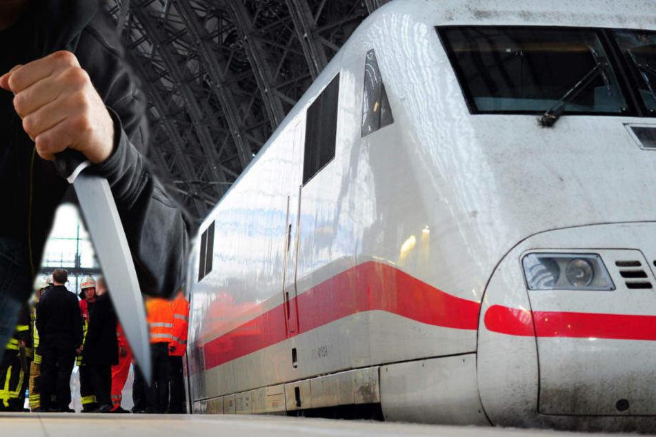 Der Intercity war auf dem Weg nach Westerland und hatte im Hauptbahnhof frankfurt gestanden (Symbolbild).
