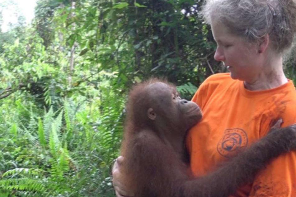 Auf ihrer Forschungreise in Borneo erlebte die Tierschützerin hautnah, wie schlimm es um die Zukunft der Orang-Utans steht.