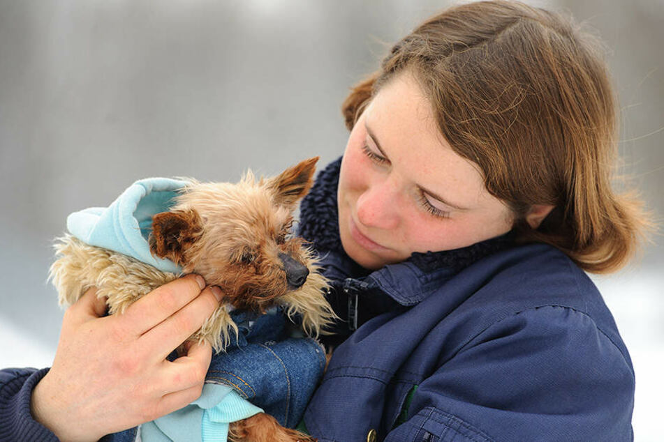 Tierheimmitarbeiterin Antje Schmidt (28) kümmert sich mit ihren Kollegen  derzeit um die Terrier-Dame Betty.