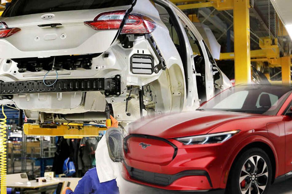 Ford setzt auf Elektroantrieb bei 14 Modellen! Mustang Mach-E als Vorreiter