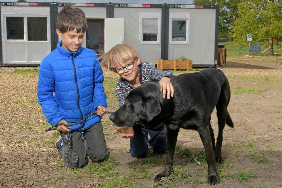 Anton (9) und Hugo (9) mit Schulhund Albus.