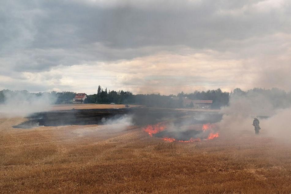 Das Feld brannte lichterloh.