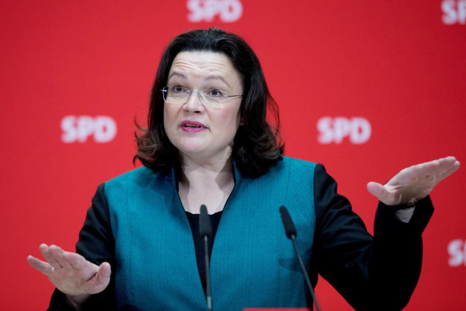 Bundesarbeitsministerin Andrea Nahles (SPD) hat an der Entwicklung des Projekts mitgearbeitet. Wird es die Wahl überleben?