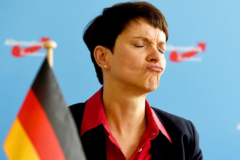 """Das Menschenbild der AfD und somit auch von Frauke Petry soll """"abwertend und geringschätzend"""" sein."""