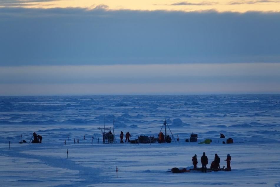 """Wissenschaftler der """"Mosaic"""" Expedition der Polarstern stehen auf dem Eis in der Arktis."""