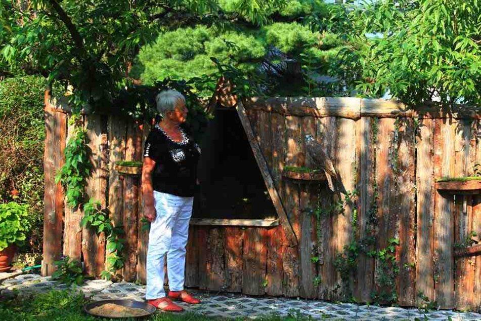 Falknerin Gisela Braun (70) vermisst ihre Cora.