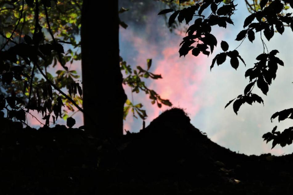 Die Flammen schlugen mehrere Meter hoch.
