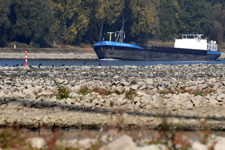 Im Rhein ist das Wasser zu niedrig.