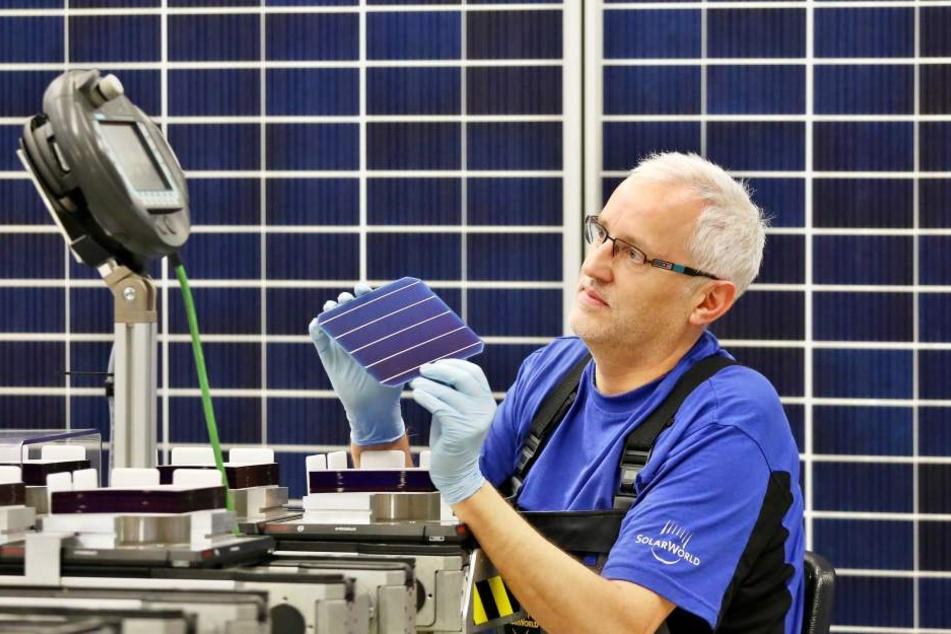 Jörg Liebscher, Mitarbeiter der Modulfertigung bei Solarworld, prüft eine PERC-Zelle.