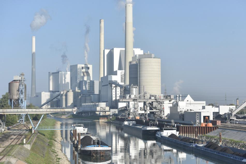 Klimaaktivist wegen Hausfriedensbruch am Großkraftwerk vor Gericht