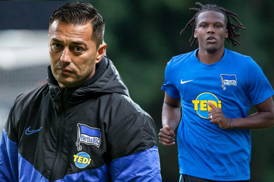 Trainer Ante Covic hofft auf den Einsatz von Dedryck Boyata.