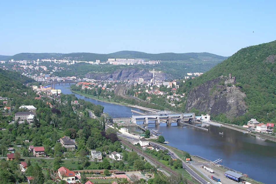 Die Elbe bei Usti: Hier wurden erschreckend viele Grundeln aus dem Wasser gezogen.