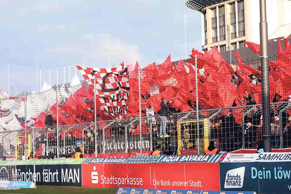 Rekord: Zum Auswärtsspiel bei 1860 München begleiteten 1500 Fans ihren FSV Zwickau.