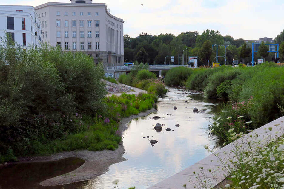 Die Chemnitz kommt am Pegel 1 nur noch auf 24 Zentimeter.