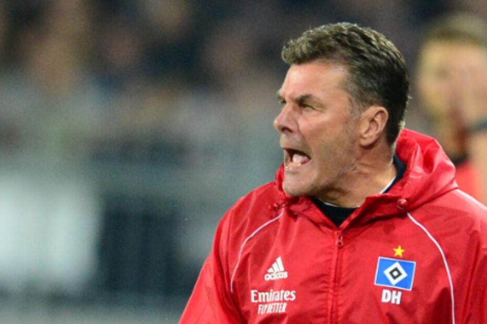 HSV-Trainer Dieter Hecking warnt vor einem Selbstläufer.