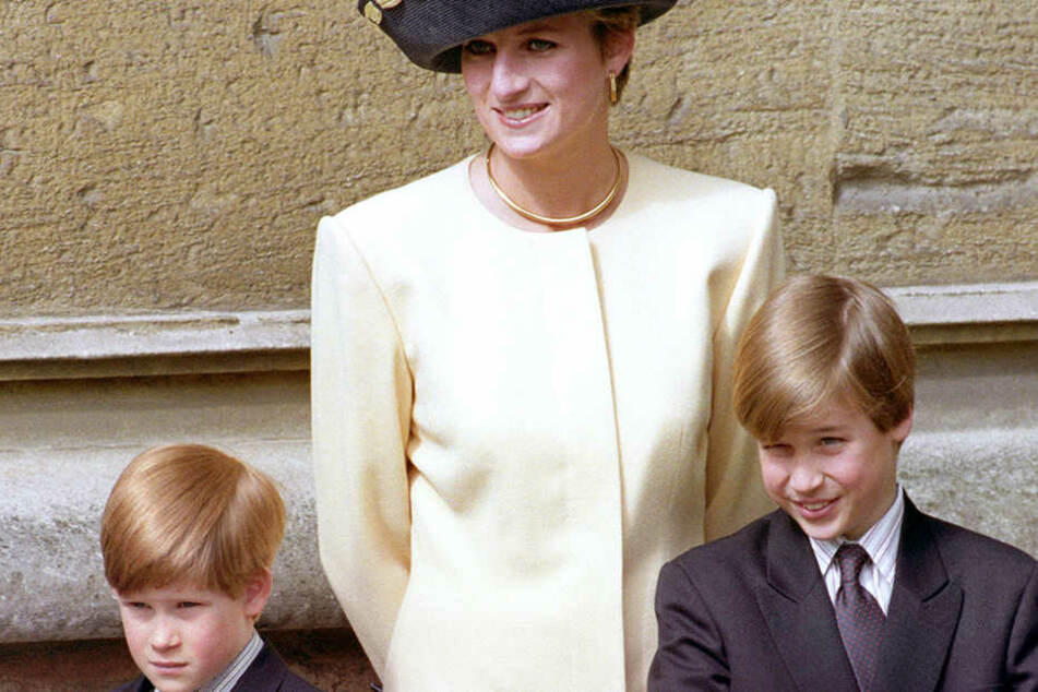 Harry und William zu Lebzeiten ihrer geliebten Mama.