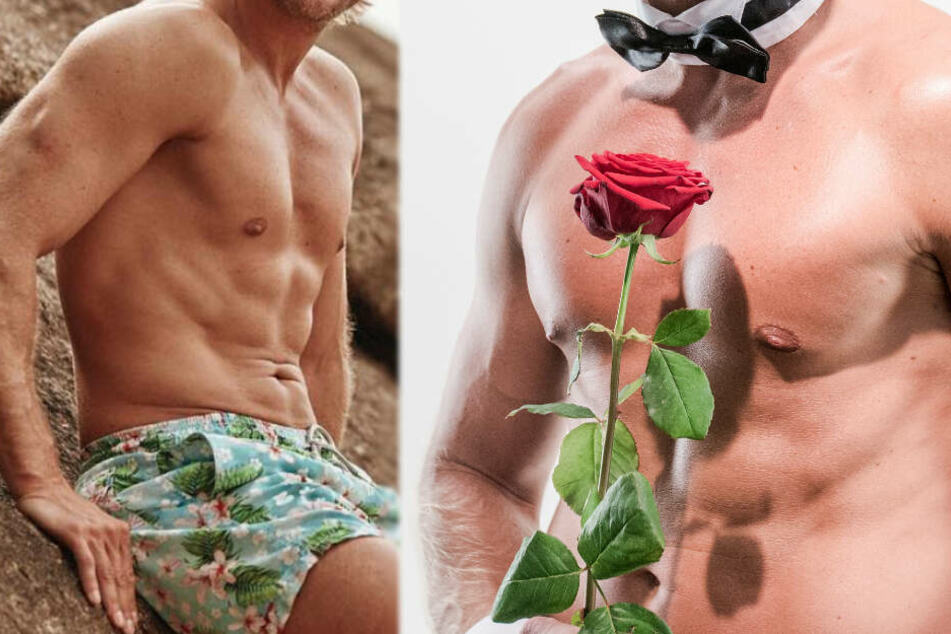 """Sensation bei """"Bachelor in Paradise""""! Dieser Rosenkavalier ist wieder dabei"""