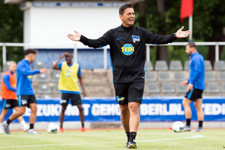 Neuer Taktgeber auf dem Trainingsplatz: Ante Covic besitzt klare Vorstellungen.