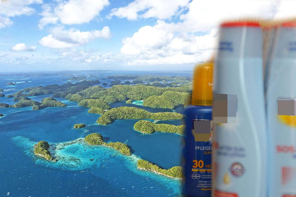 Inselreich Palau verbietet als erstes Land Sonnencremes