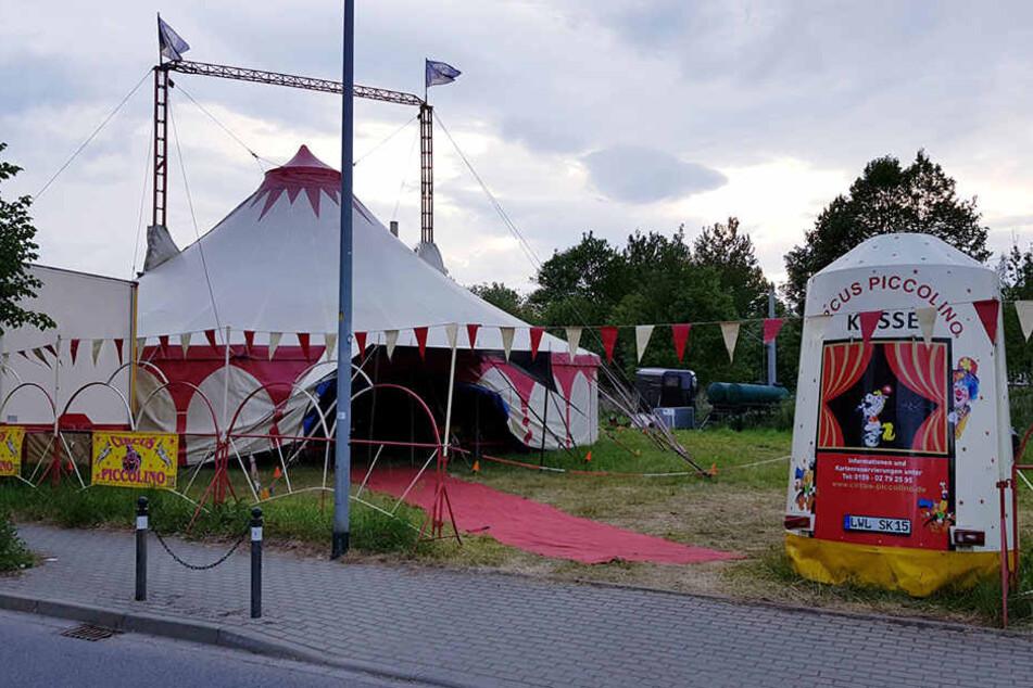Im Circus Piccolino passierte der schlimme Unfall.