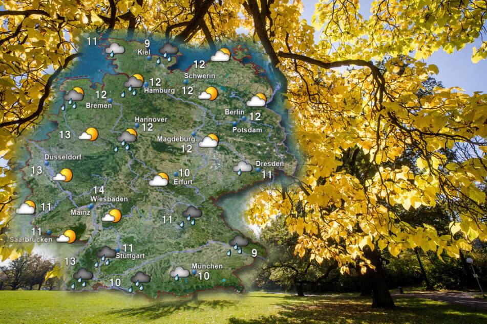 """Gibt's einen """"goldenen Oktober""""? Das Wetter für die nächsten Tage"""