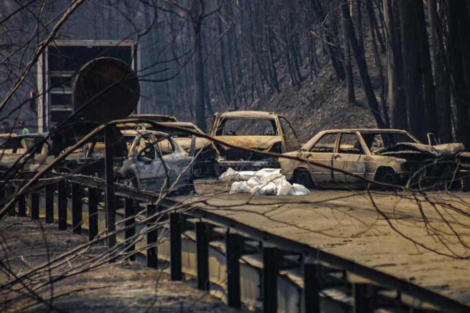 Viele Autofahrer sind in ihren Autos gestorben, als die Flammen sie einschlossen.