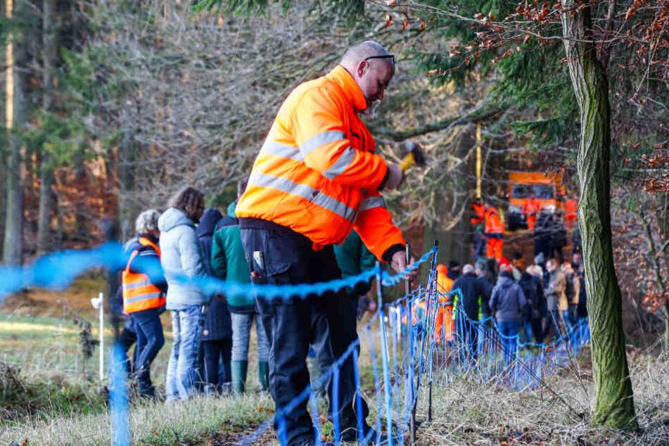 Hier übt Hans Klaue (54) vom Veterinäramt Bautzen das Aufstellen eines Elektro-Wildabwehrzaunes.