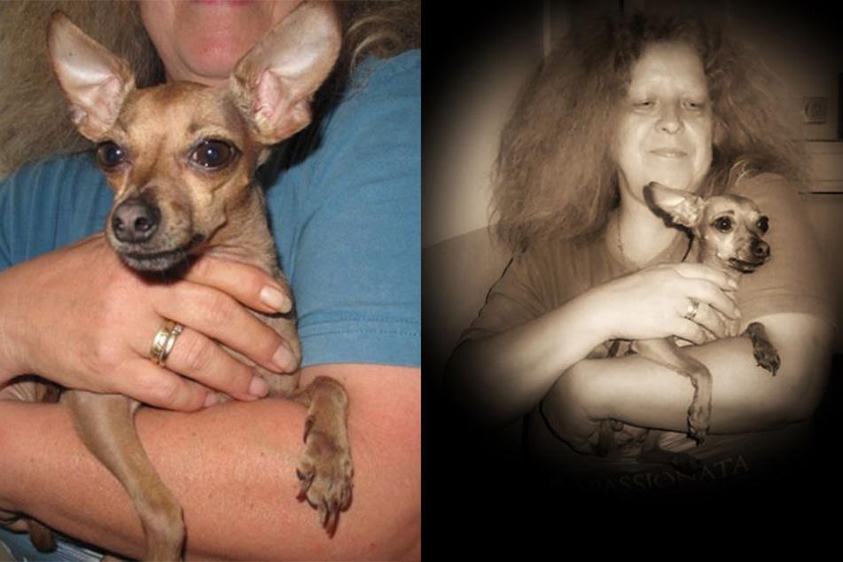 Drama mit glücklichem Ausgang: Petra T. hat ihr Hundemädchen zurück.