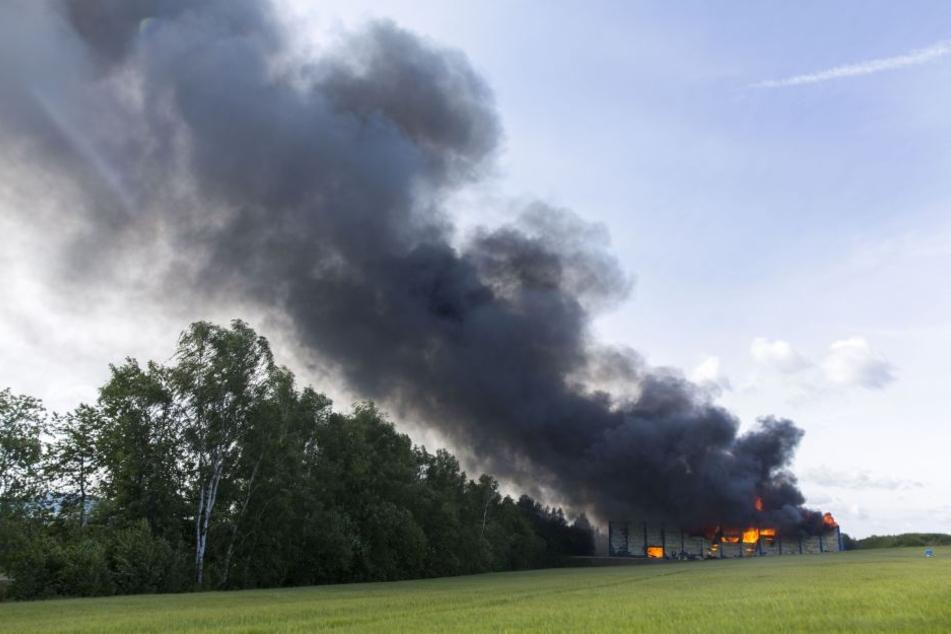Die riesige Rauchwolke war kilometerweit zu sehen.