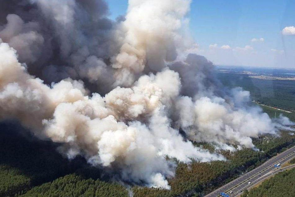 Waldbrand bei Fichtenwalde: A9 wieder frei, war eine Zigarette der Auslöser?