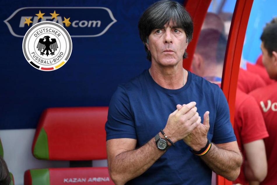 Sollte Jogi Löw zurücktreten? Das sagen die deutschen Fans nach peinlichem WM-Aus
