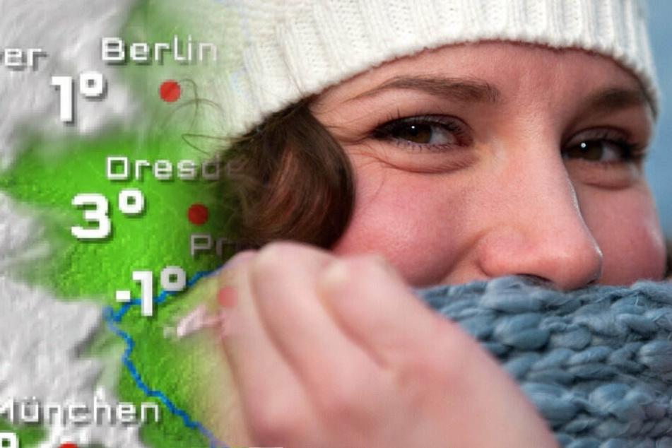 Bibbern in Berlin: Das neue Jahr bringt den Frost zurück