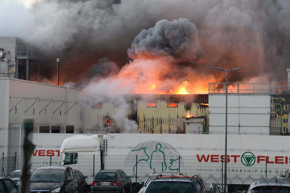 Ein Feuer im Februar 2016 zerstörte den Standort Paderborn.