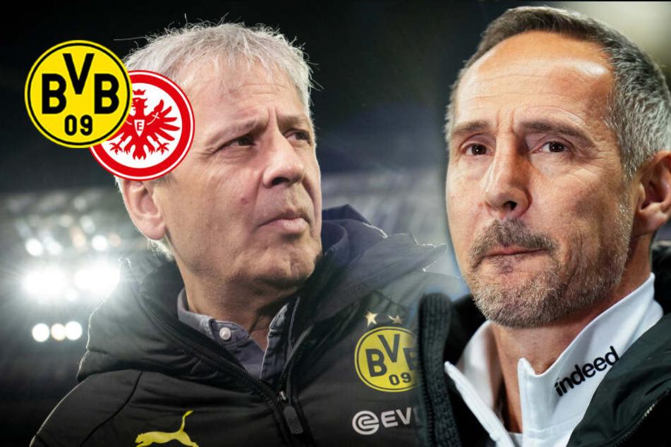 BVB: Siegt sich Eintracht-Trainer Hütter heute auf Favres Stuhl?