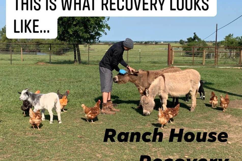 Animals at Austin ranch give recovering addicts a helping paw