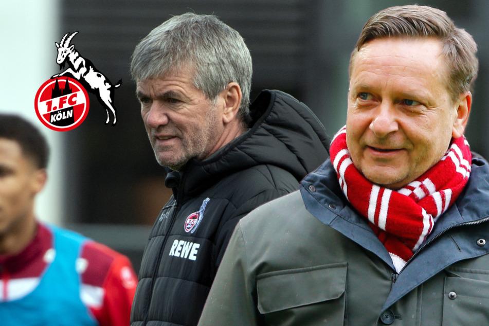 FC-Chef Heldt vor Duell gegen Leverkusen optimistisch: Lob für Friedhelm Funkel