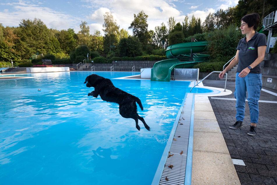 Alexandra Hertel (45) von den Stadtwerken ließ Aro (9) schon einmal Probeschwimmen.