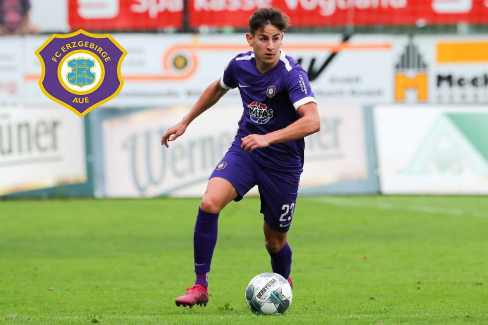 Aue-Vertrag aufgelöst: Nicolas Sessa wechselt nach Kaiserslautern