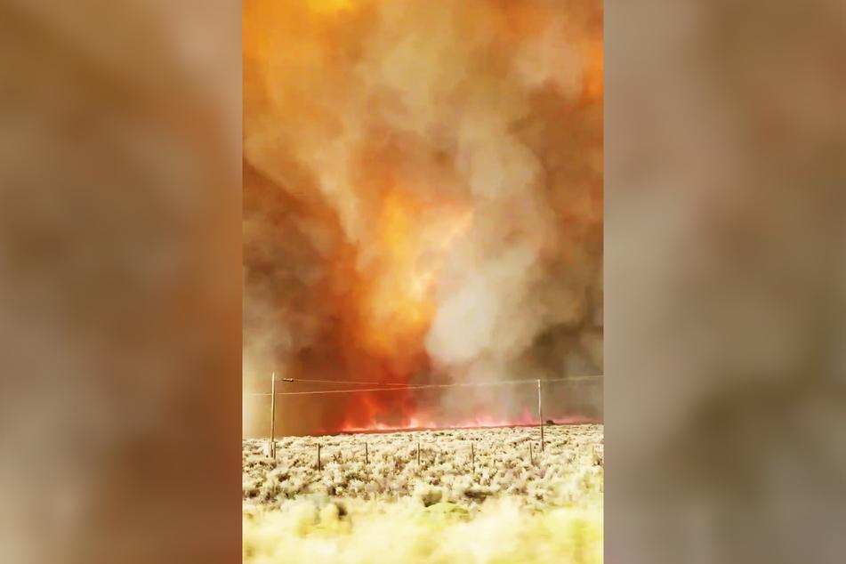 Das Feuer breitet sich entlang einer Autobahn aus.
