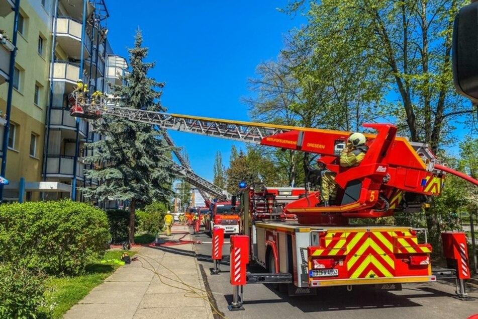 Über mehrere Drehleitern bekämpfen die Kameraden der Dresdner Feuerwehr den Brand im Dachbereich.
