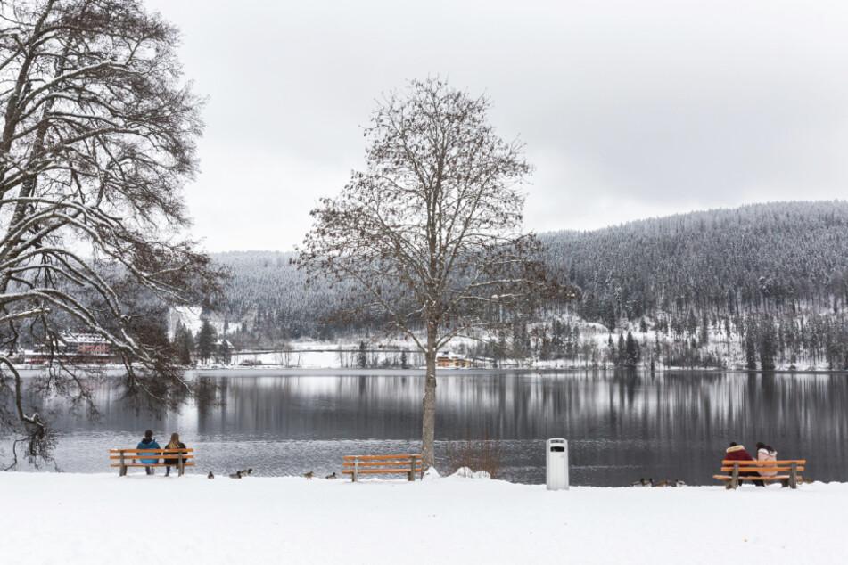 Menschen sitzen auf Parkbänken am verschneiten Ufer des Titisee.