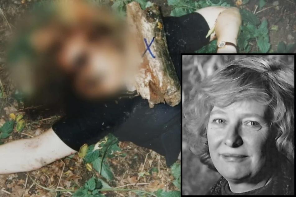 Erschlagene Bürgermeisterin in Wald gefunden! Wie eine Ameise den Täter überführte