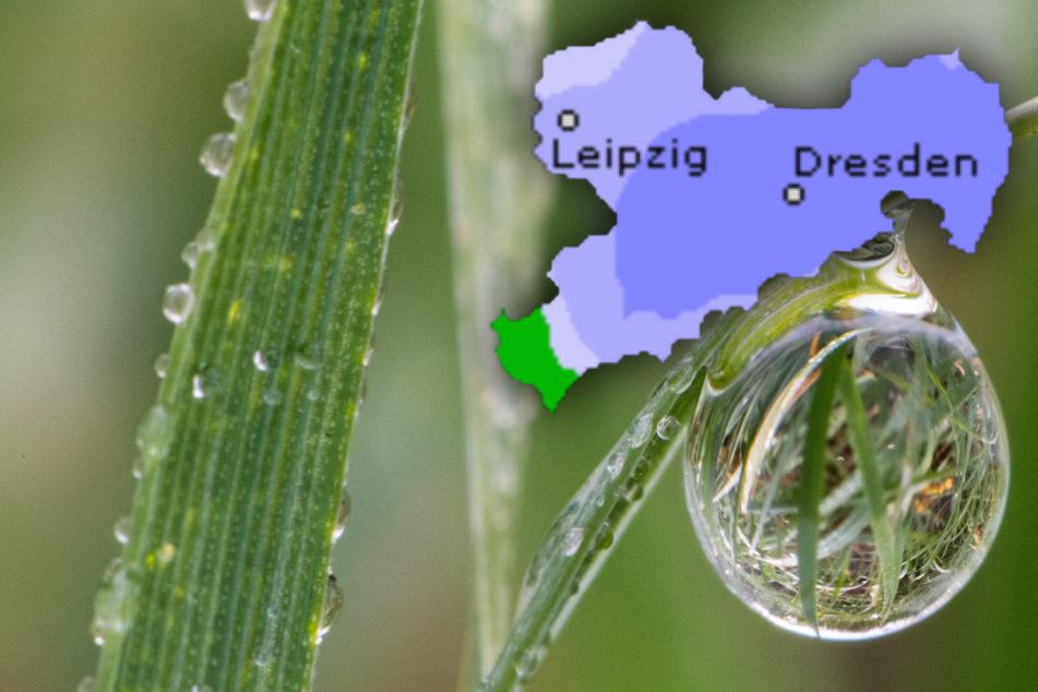 Am Wochenende sind in vielen Teilen Sachsens einige Schauer möglich und vor allem die Nächte werden schon deutlich kühler. (Symbolbild)