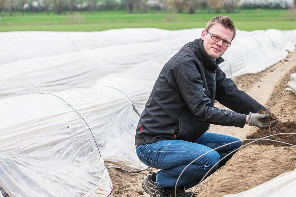 Nicht nur die Spargelernte bereitet Landwirten jetzt Sorge